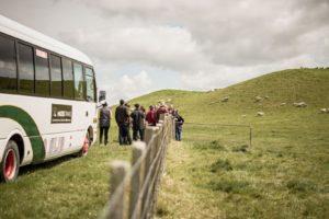 New Zealand-farm-tour6