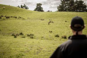 New Zealand-farm-tour9