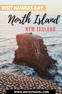 A pinterest image of the best Hawkes Bay Activities