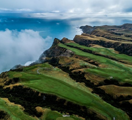 a beautiful view of cape kidnappers which is one of the best Hawkes bay activities!