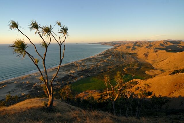 A stunning photo of Ocean Beach where you can take a horse trek! One of the ultimate Hawkes Bay Activities